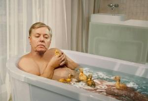 Lindsey Graham :: Harmless Ducks