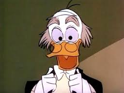duck55