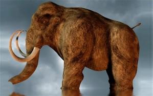 mastodon_2554339b