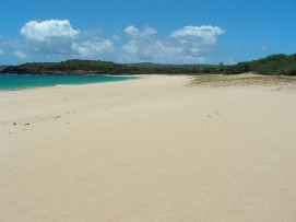 beach33