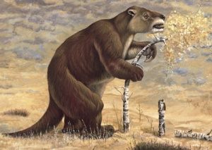 Giant-Ground-Sloth