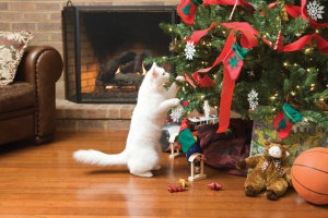 Christmas-Tree-Bad-Cat-2